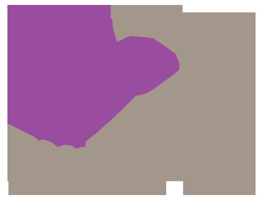 Alquiler Camaras Phantom