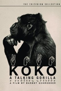 Koko, a Talking Gorilla Technical Specifications