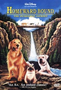 Homeward Bound: The Incredible Journey | ShotOnWhat?
