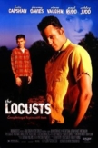 The Locusts