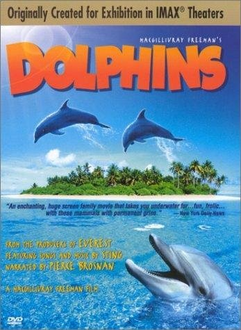 Dolphins | ShotOnWhat?
