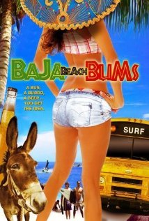 Baja Beach Bums Technical Specifications