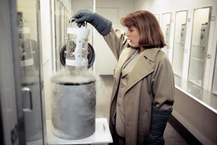 """The X-Files"" The Erlenmeyer Flask Technical Specifications"