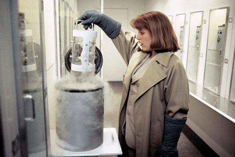 """The X-Files"" The Erlenmeyer Flask"