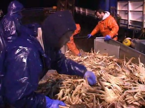 """Deadliest Catch"" Good Fishing Technical Specifications"