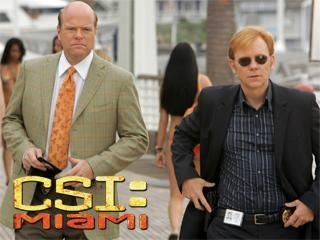 """CSI: Miami"" Internal Affairs 