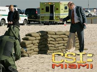 """CSI: Miami"" Throwing Heat 