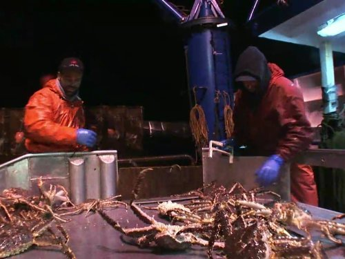 """Deadliest Catch"" Cheating Death Technical Specifications"
