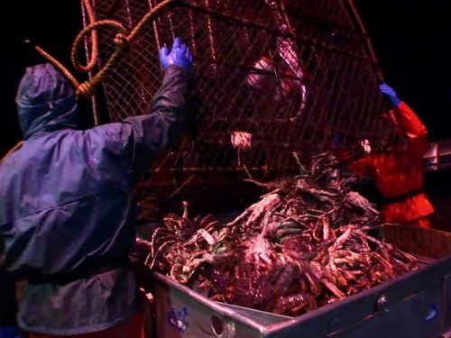 """Deadliest Catch"" Bering Sea Salvation Technical Specifications"