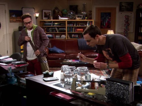 """The Big Bang Theory"" The Luminous Fish Effect 