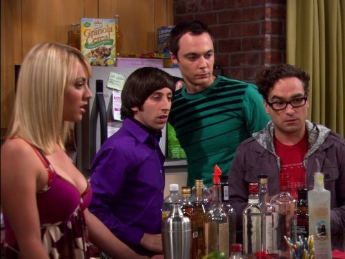 """The Big Bang Theory"" The Grasshopper Experiment 