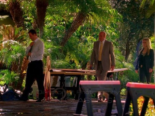 """CSI: Miami"" Chip/Tuck Technical Specifications"