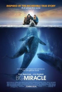 Big Miracle Technical Specifications