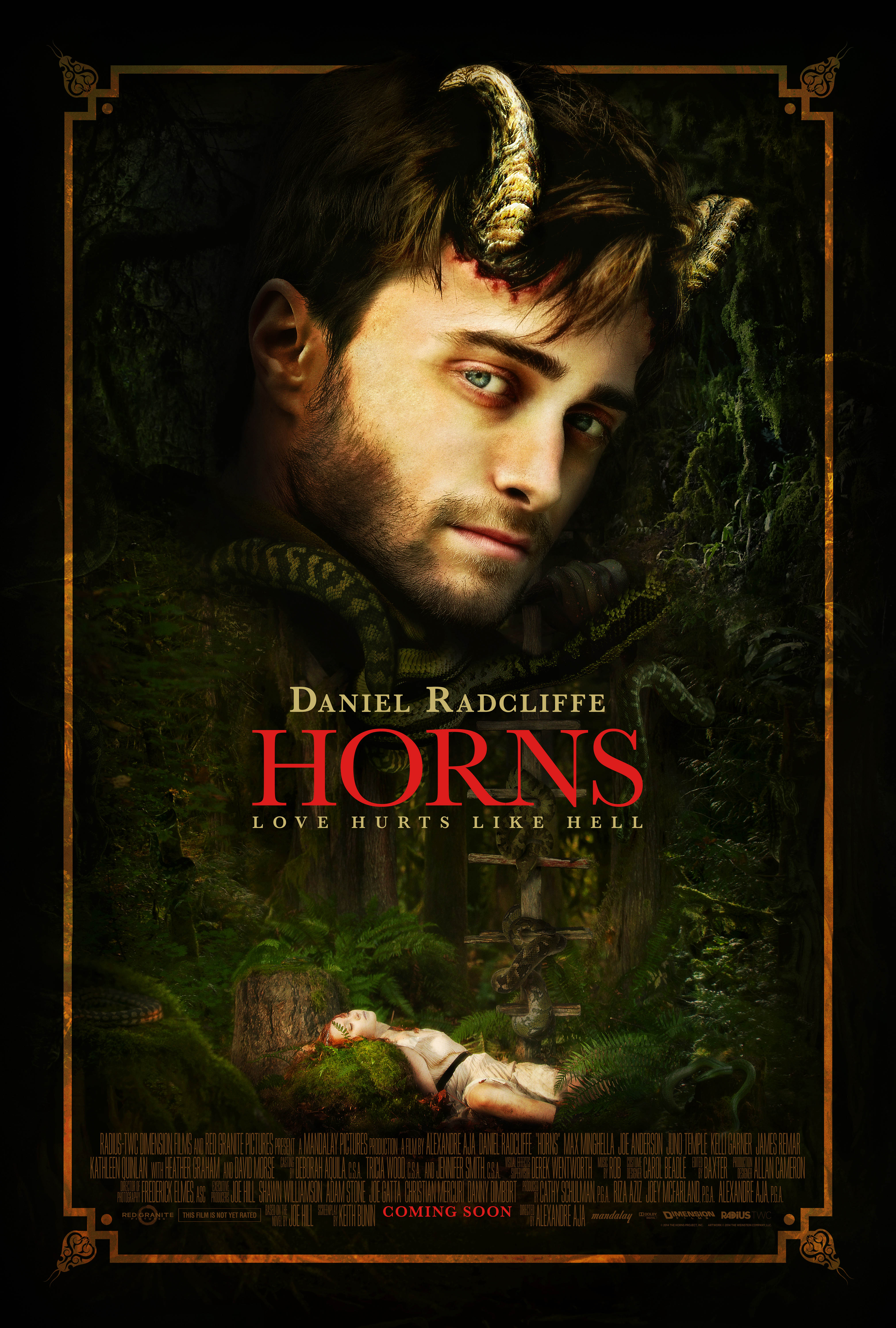 Horns (2013) Technical Specifications
