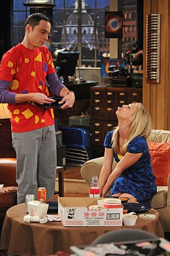 """The Big Bang Theory"" The Gorilla Experiment Technical Specifications"