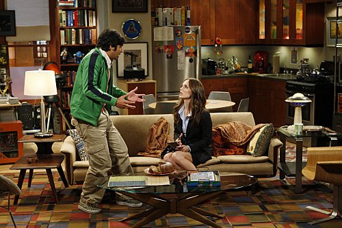 """The Big Bang Theory"" The Apology Insufficiency 