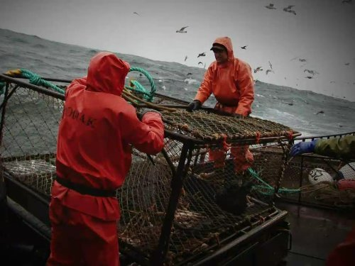 """Deadliest Catch"" Sea Tested Technical Specifications"