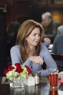 """Body of Proof"" Broken Home Technical Specifications"