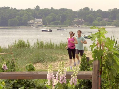 """Royal Pains"" Run, Hank, Run Technical Specifications"
