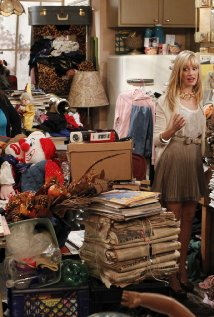 """2 Broke Girls"" And Hoarder Culture Technical Specifications"