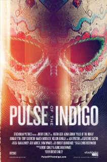 Pulse of the Indigo Technical Specifications