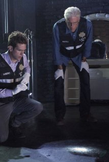 """CSI: Crime Scene Investigation"" It Was a Very Good Year Technical Specifications"