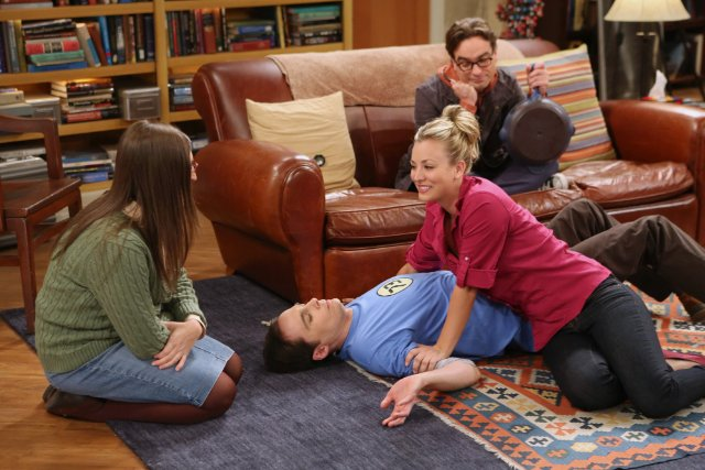 """The Big Bang Theory"" The Re-Entry Minimization 