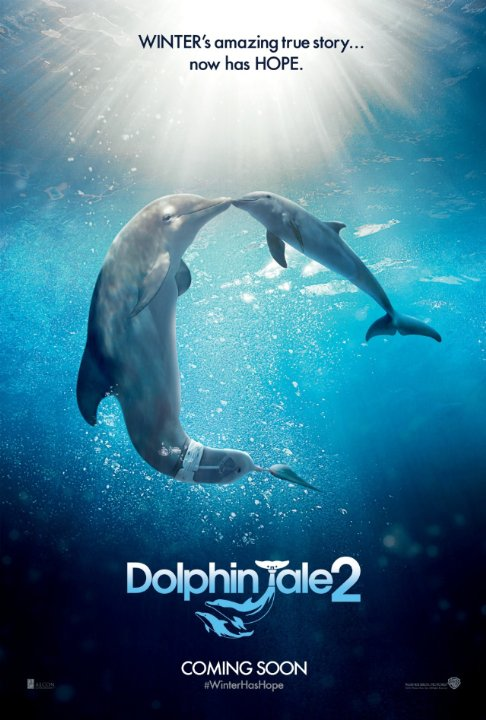 Dolphin Tale 2 | ShotOnWhat?