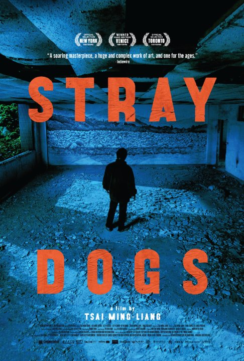 Stray Dogs | ShotOnWhat?