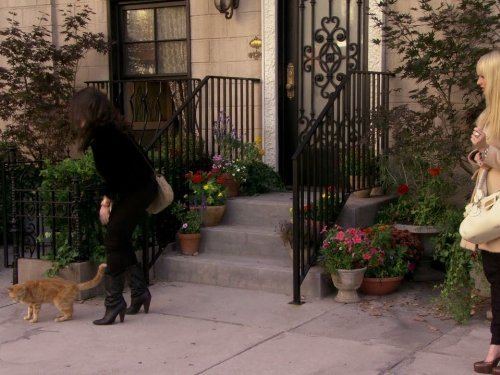 """2 Broke Girls"" And the Kitty Kitty Spank Spank Technical Specifications"