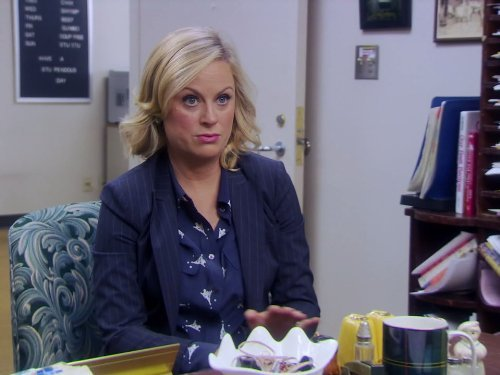"""Parks and Recreation"" New Beginnings 