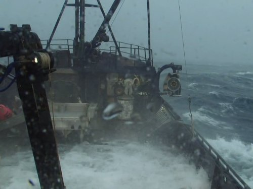 """Deadliest Catch"" Darwin's Law Technical Specifications"