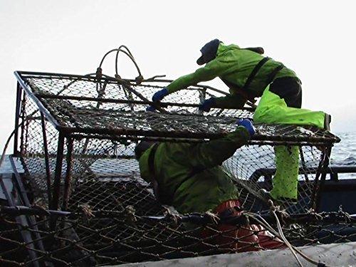 """Deadliest Catch"" Sabotage Technical Specifications"