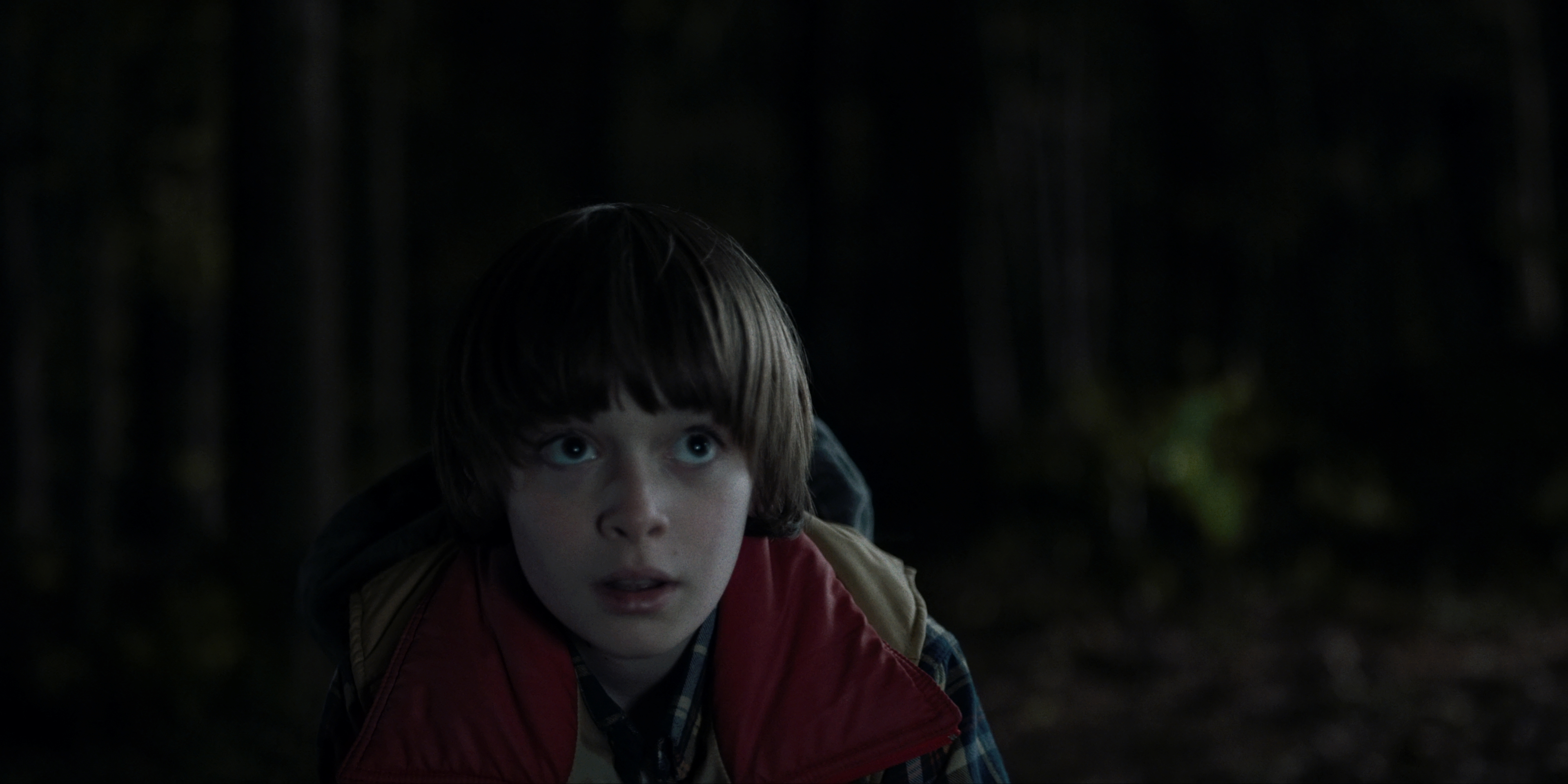 """Stranger Things"" Chapter One: The Vanishing of Will Byers 