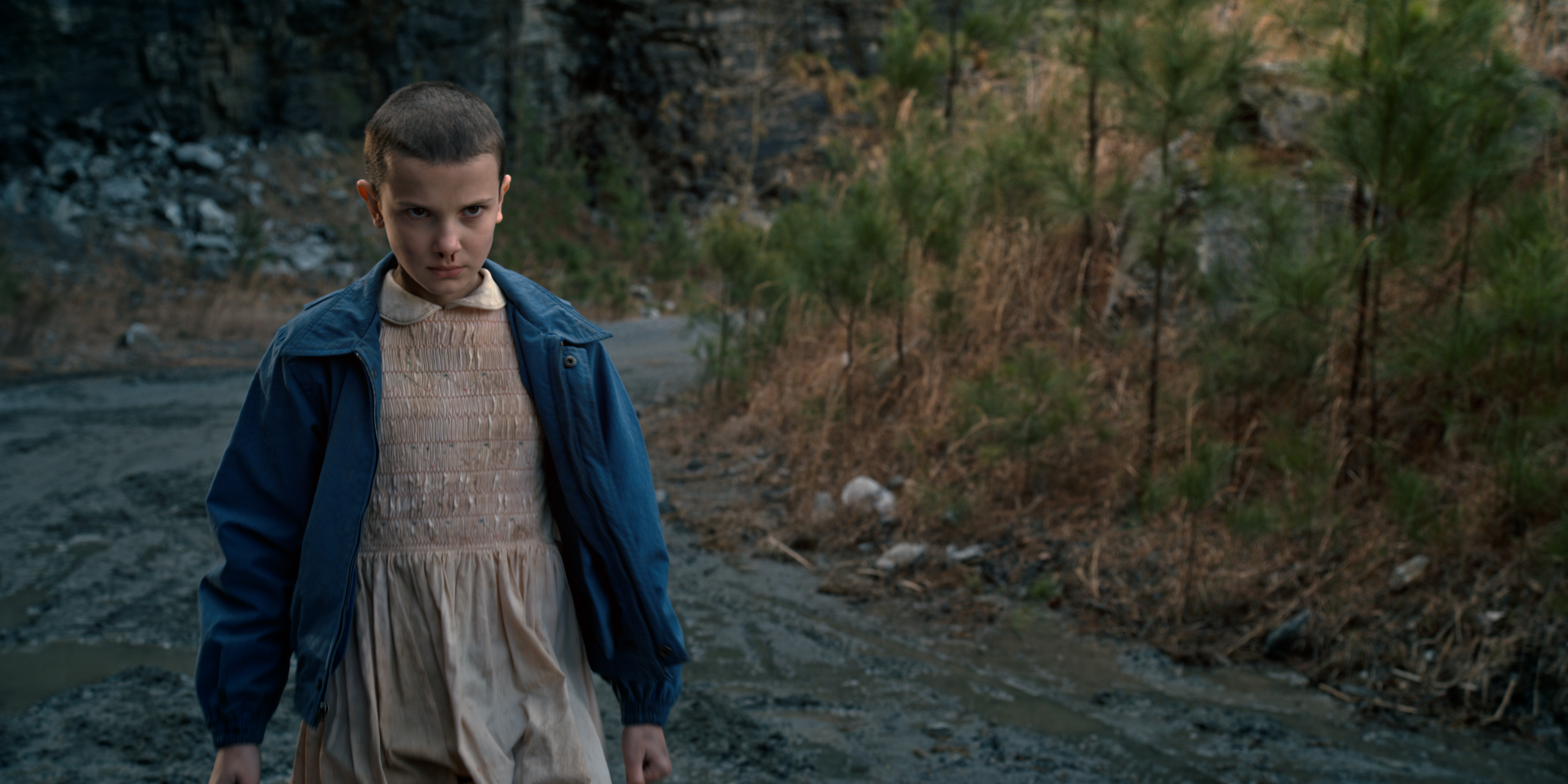 """Stranger Things"" Chapter Six: The Monster 