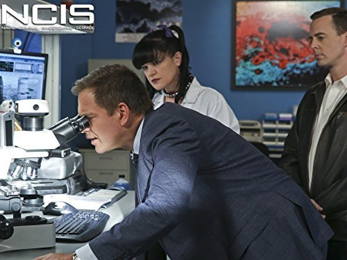 """NCIS"" 16 Years 