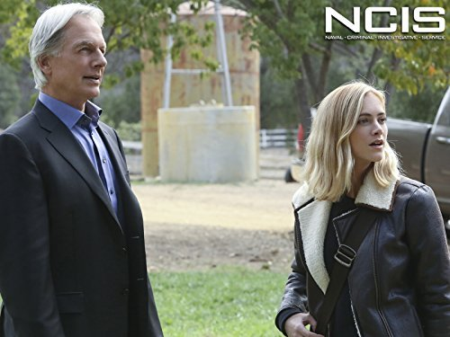 """NCIS"" Blood Brothers 