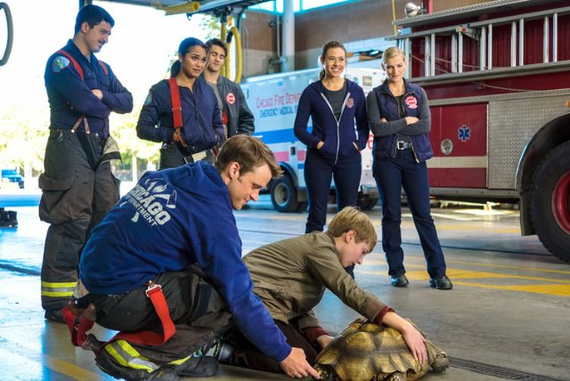 """Chicago Fire"" When Tortoises Fly 
