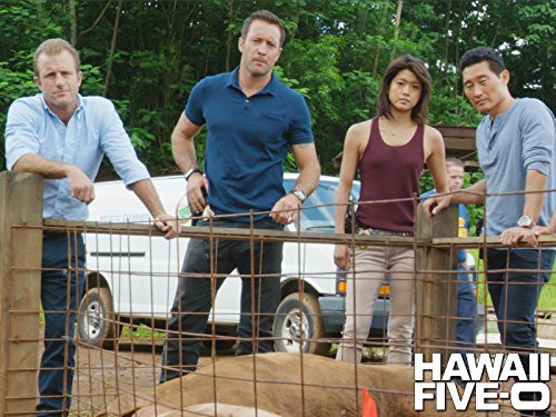 """Hawaii Five-0"" Hana Keaka Technical Specifications"