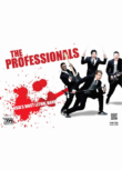 The Professionals: Funk It Up (2012)