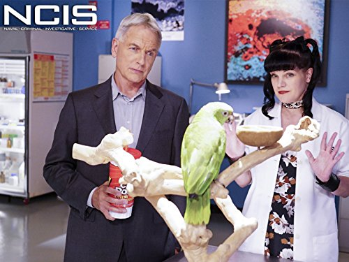 """NCIS"" Privileged Information 