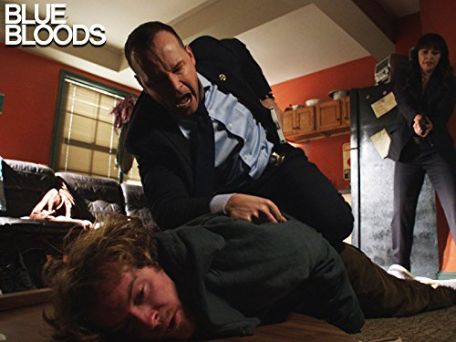 """Blue Bloods"" Ghosts of the Past 