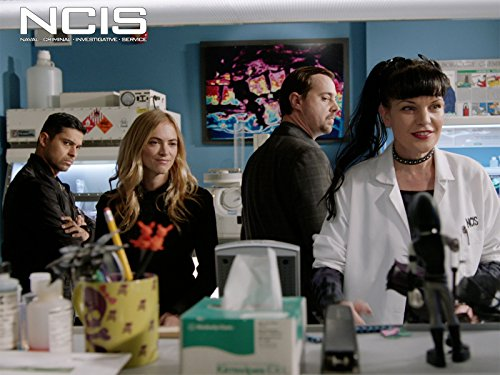 """NCIS"" Burden of Proof 