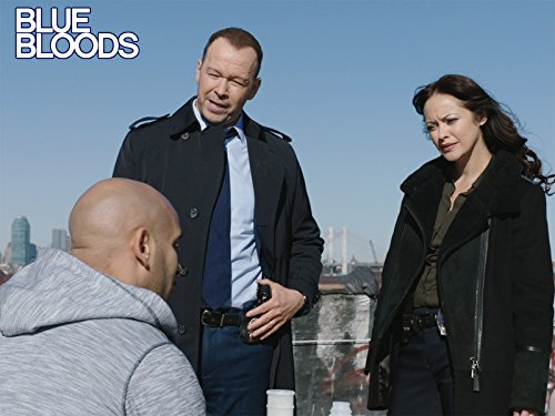 """Blue Bloods"" The Brave 